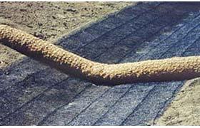 erosion control coir wattles